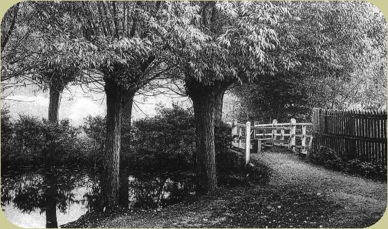 JudgeHeathLane1900