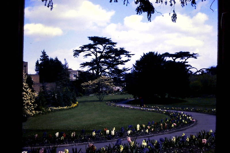 Cedars Gardens, Uxbridge, April 1967