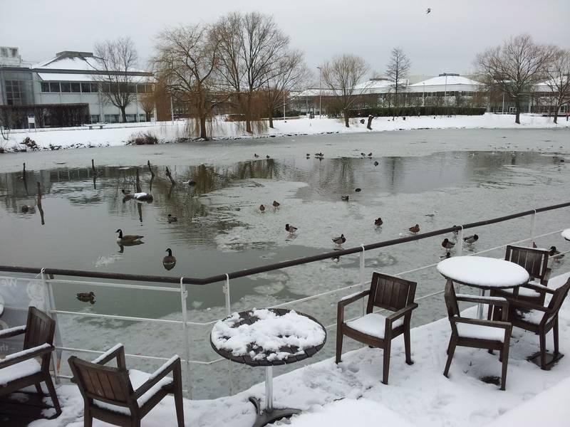 Stockley Park, Winter 2012