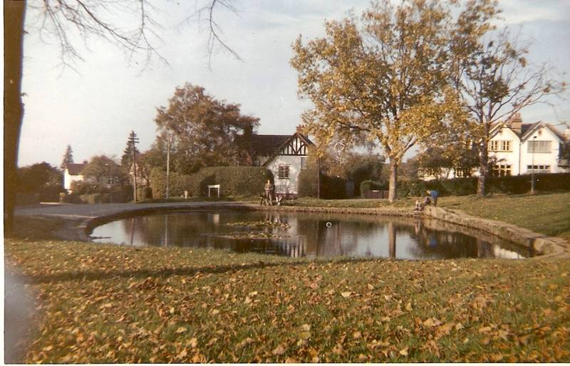 Pond on Uxbridge Common, Autumn 1963