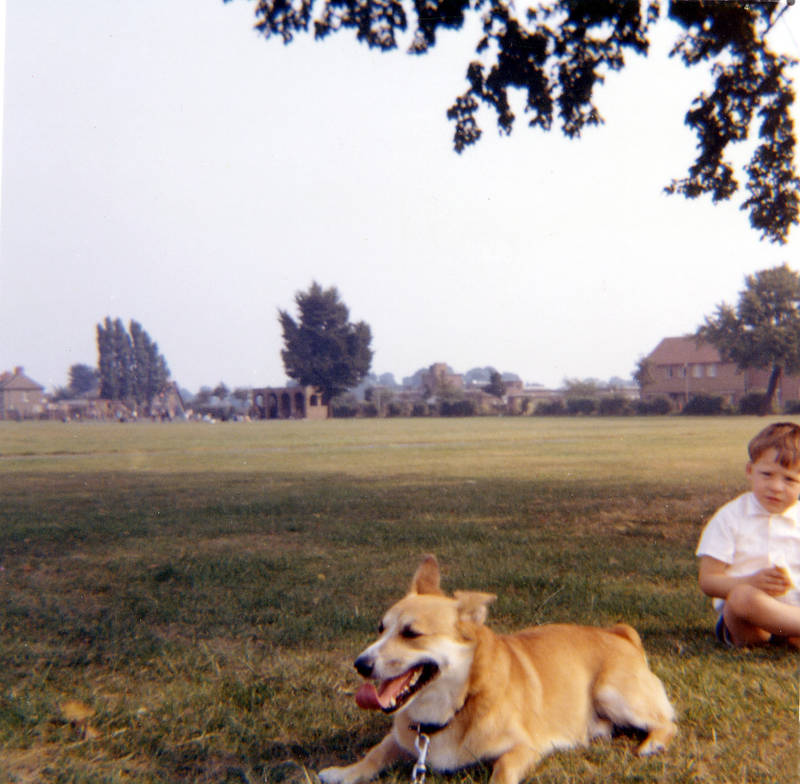 Pinkwell Park, 1963