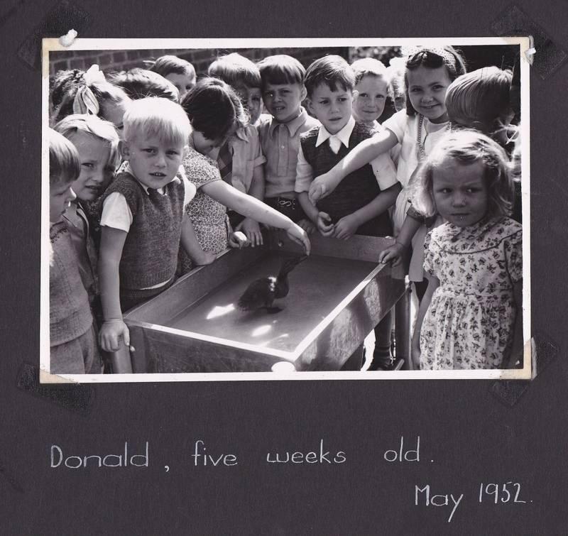 Album_-_Donald_1952
