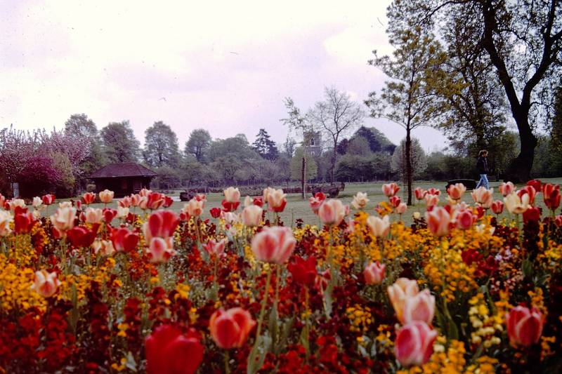 May 1968 View of Barra Hall Park Looking Towards St. Mary's