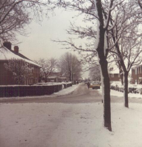 winter79a