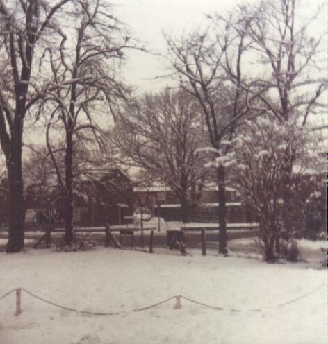 winter79d