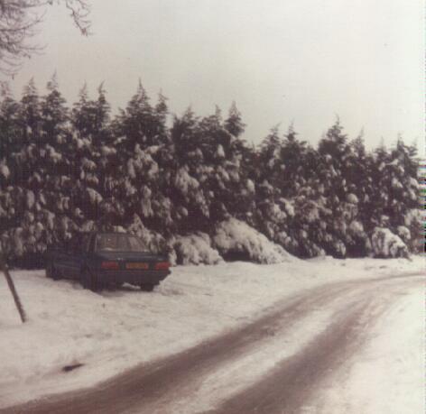 winter79e