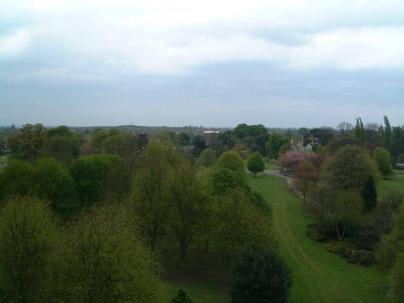 View_Towards_Barra_Hall_Park2_from_Tower