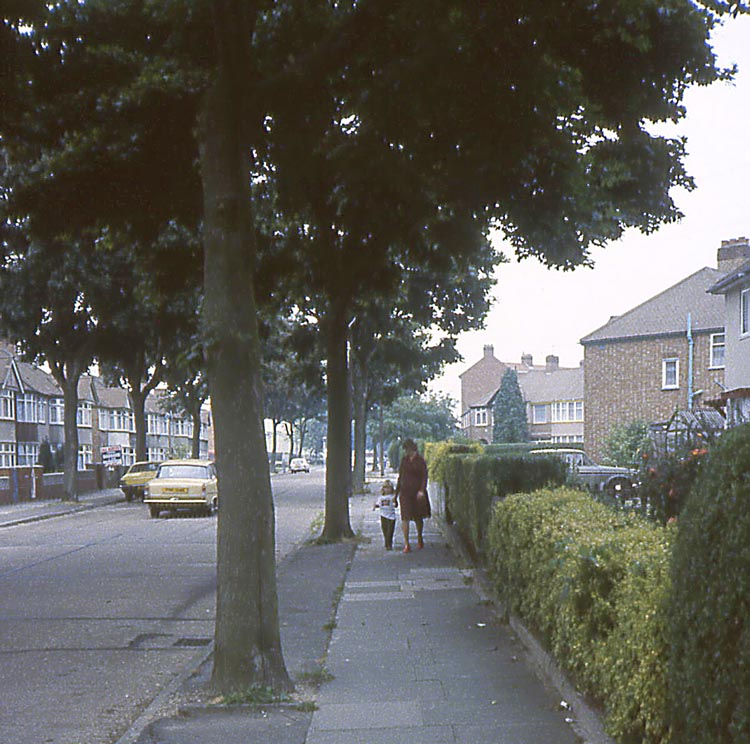 045_June_1981_Vicinity_Bourne_Ave
